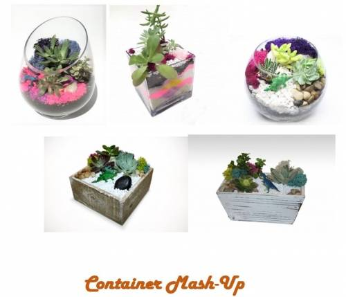 A Container Mash Up Event plant nite project by Yaymaker