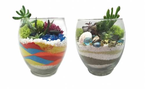 A SandnSun Succulent Garden in Serenity Vase plant nite project by Yaymaker