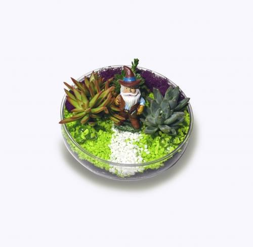 A Gardening Gnome plant nite project by Yaymaker