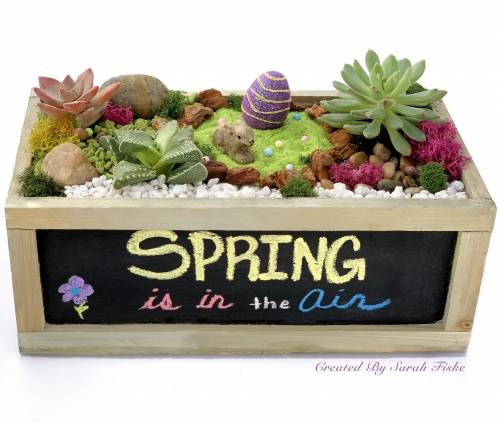 A Spring Is In The Air  Chalkboard plant nite project by Yaymaker
