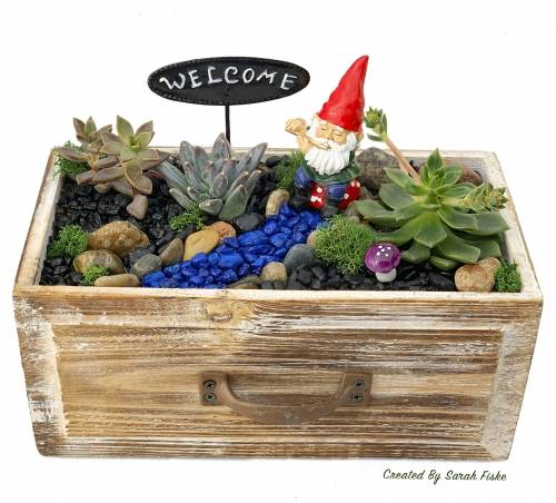A Gnome in Wooden Drawer plant nite project by Yaymaker