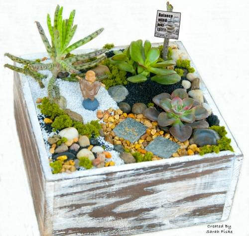 A Balance Serenity Garden plant nite project by Yaymaker