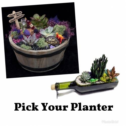 A Wine Bottle or Whiskey BarrelPick Your Planter plant nite project by Yaymaker