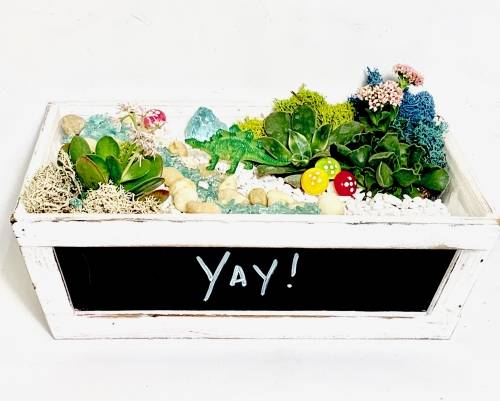 A Chalk Board Planter plant nite project by Yaymaker