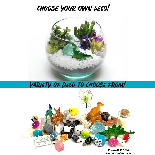 A Choose Your Own Deco  Rose Bowl plant nite project by Yaymaker