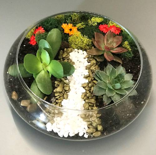 A Flower Path Lily Bowl Terrarium plant nite project by Yaymaker