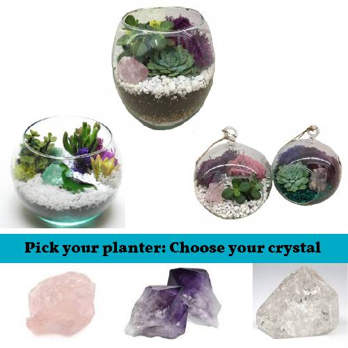 A Pick your Glass Planter  Crystal plant nite project by Yaymaker