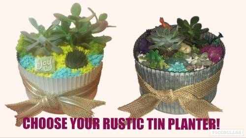A Choose Your Tin Planter plant nite project by Yaymaker