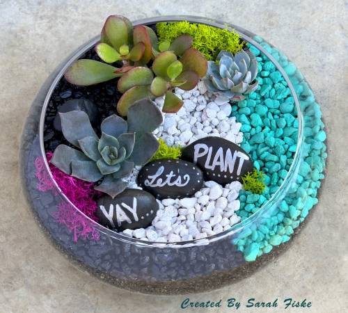 A YAY Lets Plant in Lily Bowl plant nite project by Yaymaker