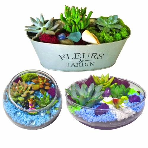 A Choose your Planter and Decorations plant nite project by Yaymaker