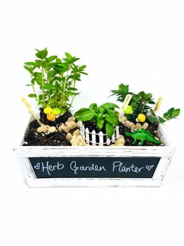 A Herb Garden II plant nite project by Yaymaker
