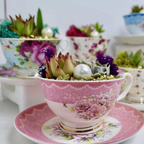 A Terrarium Tea Party for Two  Choose Two Teacups plant nite project by Yaymaker