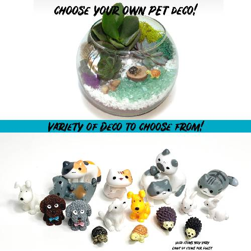 A Choose your Deco Rose Bowl  Pets plant nite project by Yaymaker