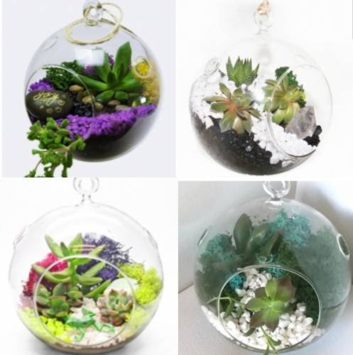 A Hanging Orb  Pick Your Design plant nite project by Yaymaker