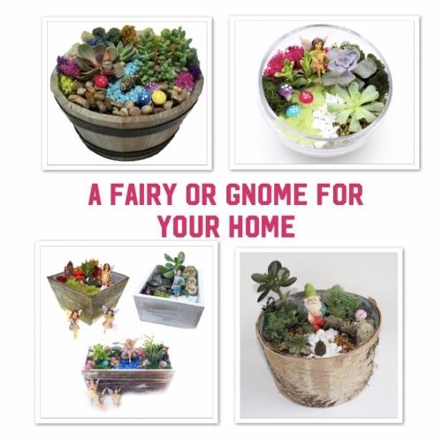 A Gnome  Fairy PickYourPlanter plant nite project by Yaymaker