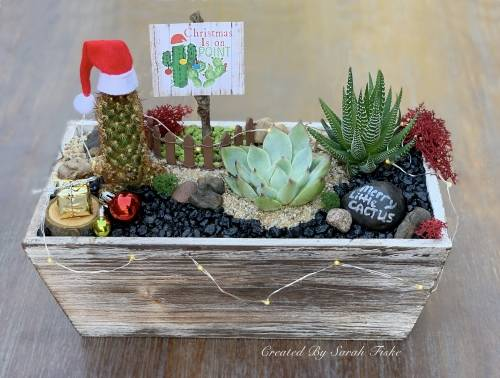 A Have a Merry Cactus plant nite project by Yaymaker