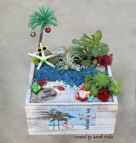 A Tis The SeaSun plant nite project by Yaymaker