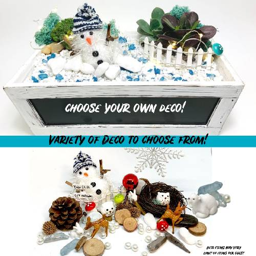 A Choose Your Own Deco  Winter Theme plant nite project by Yaymaker