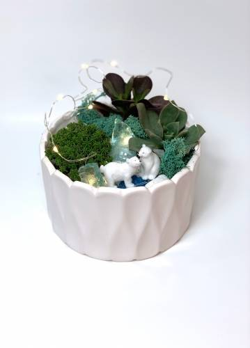 A Polar Bears  White Round Ceramic plant nite project by Yaymaker