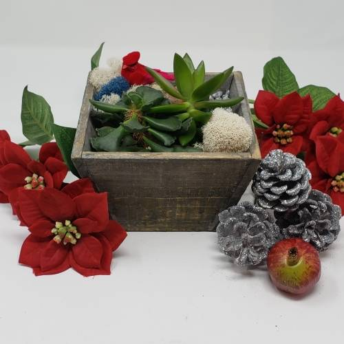 A Winter Bird Planter I plant nite project by Yaymaker
