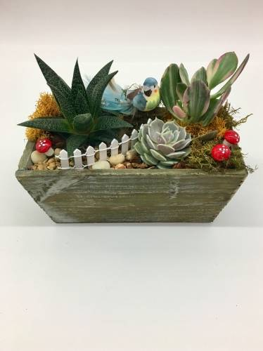 A Feathered Friend plant nite project by Yaymaker