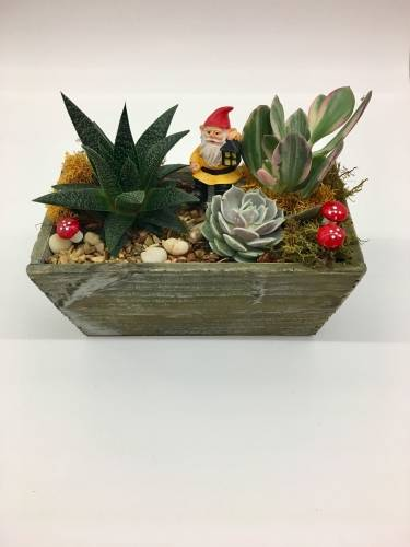 A Gnome Home plant nite project by Yaymaker