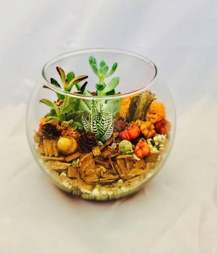 A Fall into Autumn Rose Bowl plant nite project by Yaymaker