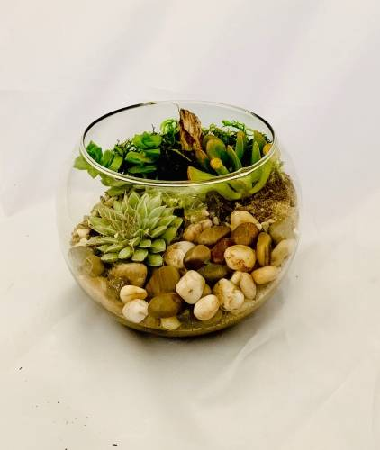 A Create Your Own Nature Bowl plant nite project by Yaymaker