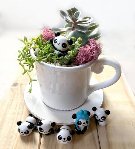 A Pick your Panda  Teacup Planter plant nite project by Yaymaker