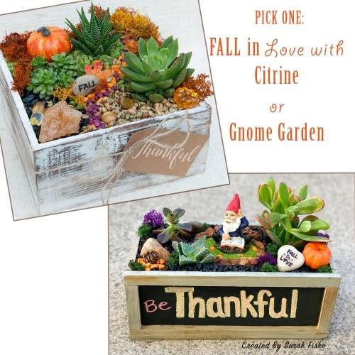 A Fall In Love with Citrine or Gnome plant nite project by Yaymaker
