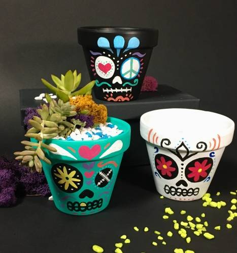A Paint  Plant  Sugar Skull Terra Cotta Pot plant nite project by Yaymaker