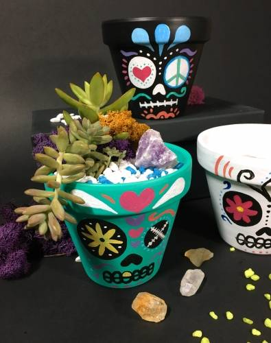 A Paint  Plant  Sugar Skull Terra Cotta Pot with Crystal III plant nite project by Yaymaker