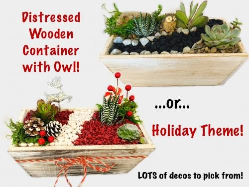 A Holiday Theme or Owl plant nite project by Yaymaker