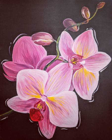 A Pretty in Pink Orchids experience project by Yaymaker