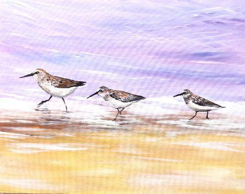 A Purple Plovers paint nite project by Yaymaker