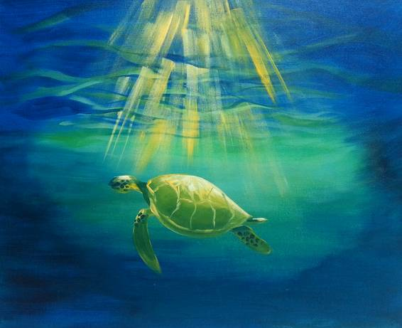 A Sea Turtle Serenity paint nite project by Yaymaker