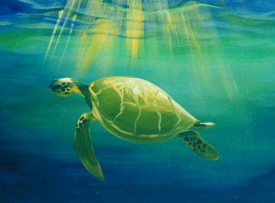 A Serene Sea Turtle paint nite project by Yaymaker