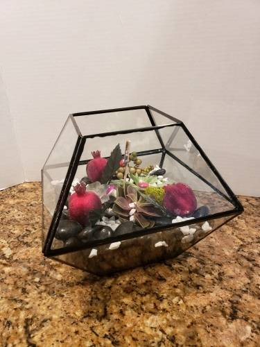 A Large 8 Sided Glass Succulent Terrarium experience project by Yaymaker