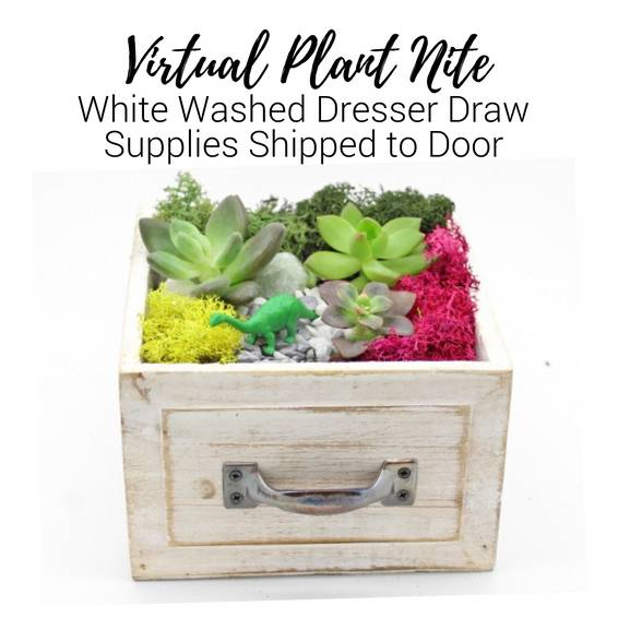 A Virtual Plant Nite White Wash Draw Supplies Shipped to Door experience project by Yaymaker