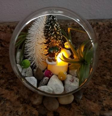 A Snowy Holiday Globe with Air Plants experience project by Yaymaker