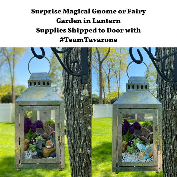 A Virtual Plant Nite Choose your Terrarium Gnome or Fairy in Lantern experience project by Yaymaker