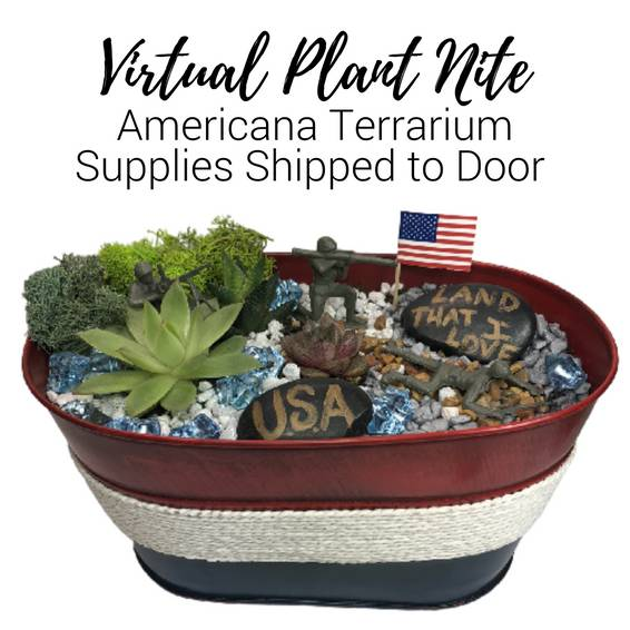 A Virtual Plant Nite Americana Terrarium  Supplies Shipped to Door experience project by Yaymaker