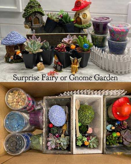 A Surprise Fairy or Gnome Garden Shipped to your location experience project by Yaymaker