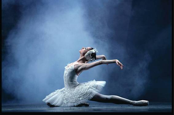 A Classical Ballet Classes experience project by Yaymaker