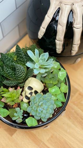 A Jack Skeleton Plant Nite Terrarium experience project by Yaymaker