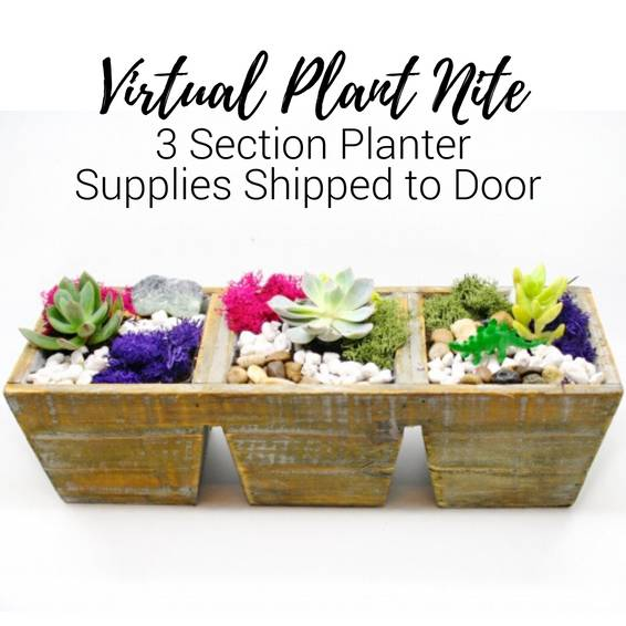 A Virtual Plant Nite 3 Section Planter Supplies Shipped to Door experience project by Yaymaker