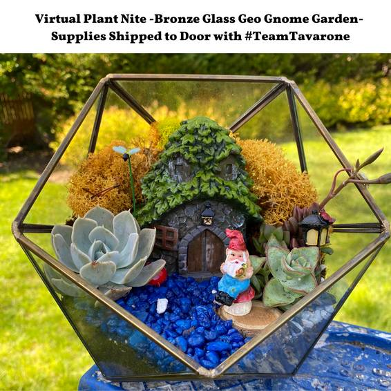 A Virtual Plant Nite Bronze Glass Geo Gnome Garden with Team Tavarone experience project by Yaymaker