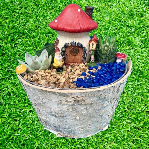 A Gnome Garden Terrarium in Birch Planter experience project by Yaymaker