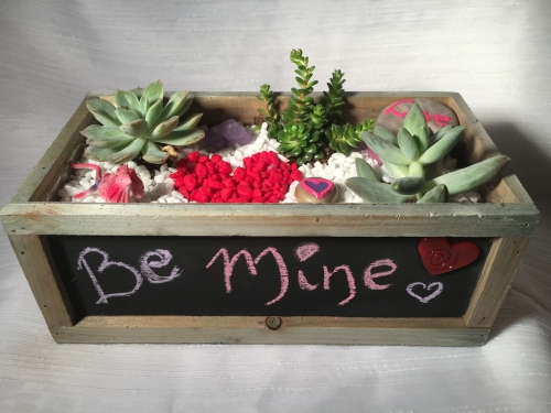 A Valentines Theme Chalkboard Planter plant nite project by Yaymaker