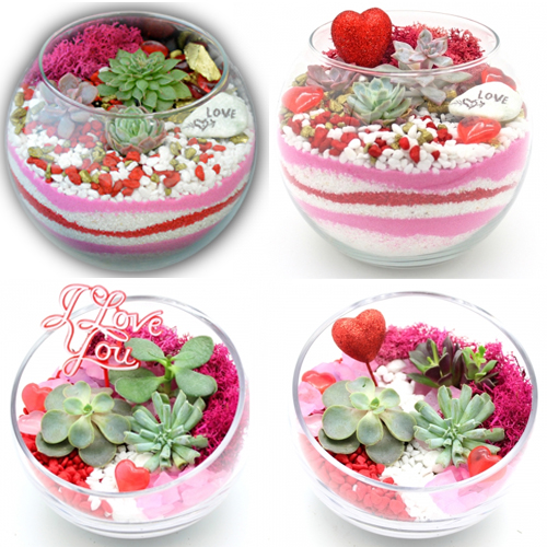 A Valentines Day Special Event  Choose Your Heart  Sand ArtDesign plant nite project by Yaymaker